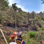 Bonifica incendio boschivo a Bragno